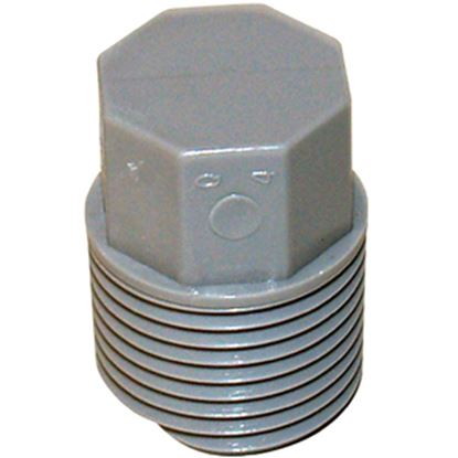 "Picture of QEST Qicktite (R) 1/2"" MPT Gray Acetal Test Plug  10-3160"