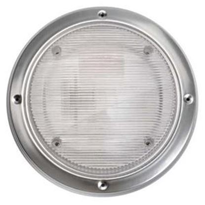 Picture of Starlights  Clear Round Scare Light 016-RSL2000 18-0005