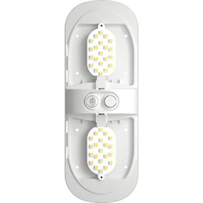 Picture of Green LongLife  12 & 24VDC Natural White Double Dome LED Interior Light Fixture 9090102 18-0705